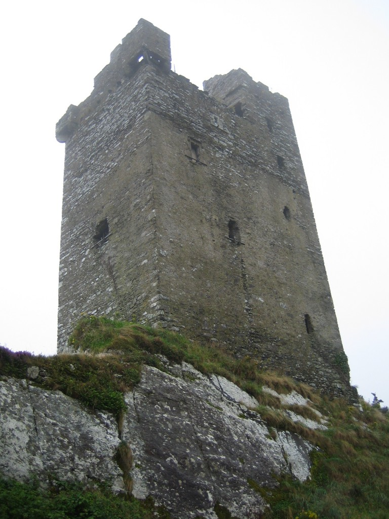 Castledonovan Castle, Co. Cork- what our tower house may have looked like in the pas