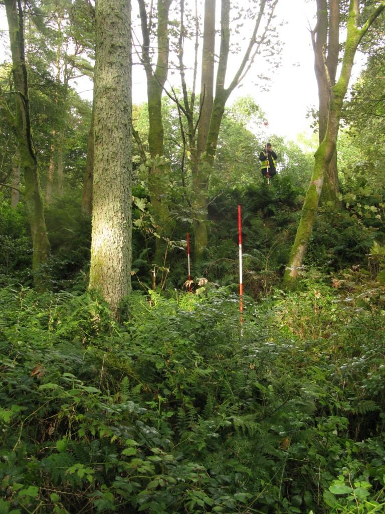 The challenging survey terrain at Moat Park motte.