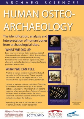 2015_Osteoarchaeology_LB_no_bleed