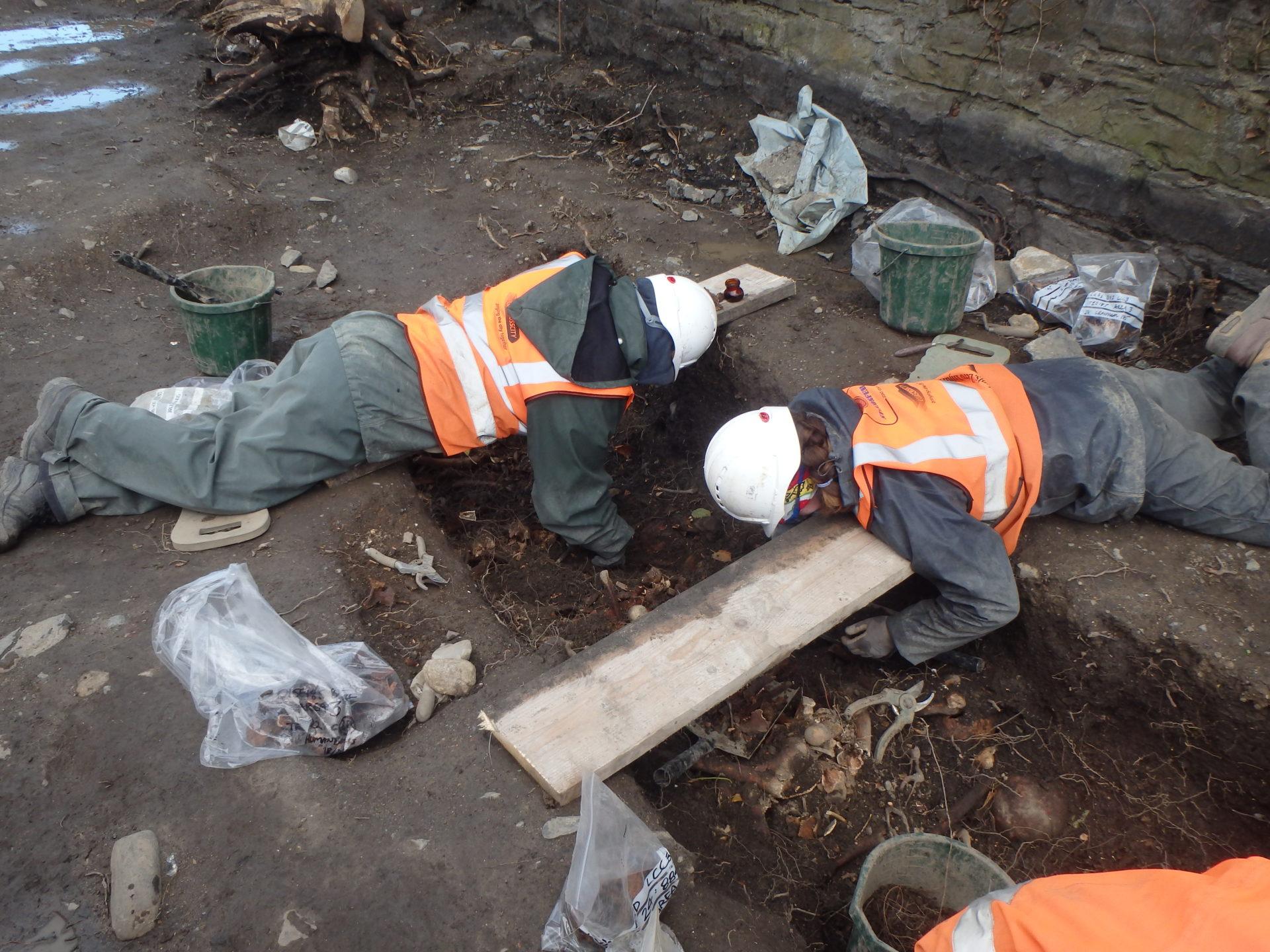 Richmond Penitentiary Cholera Cemetery Excavation, Grangegorman, Dublin.